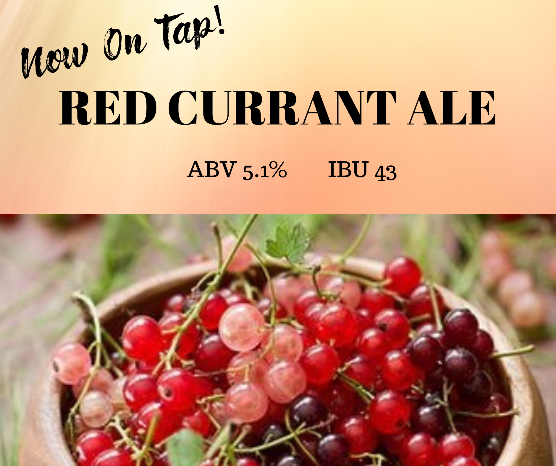 Red Currant Ale